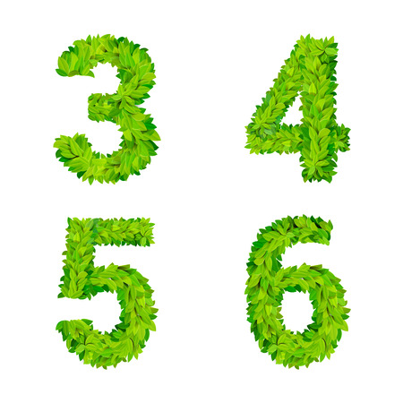 ABC grass leaves letter number elements modern nature placard lettering leafy foliar deciduous vector set. 3 4 5 6 leaf leafed foliated natural letters latin English alphabet font collection.