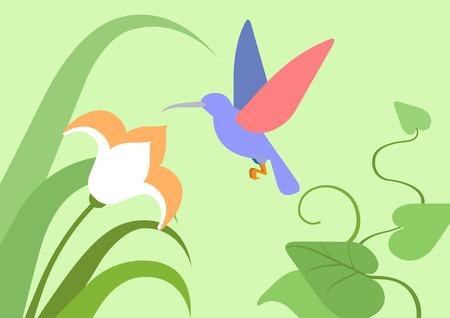 birds cartoon: Hummingbird flower natural habitat background flat design cartoon vector wild animals birds. Flat zoo nature children collection.