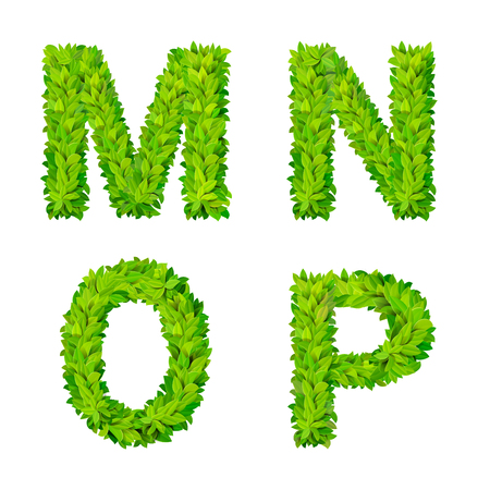 leafed: ABC grass leaves letter number elements modern nature placard lettering leafy foliar deciduous vector set. M N O P leaf leafed foliated natural letters latin English alphabet font collection.