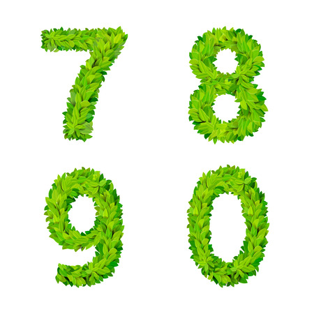 foliar: ABC grass leaves letter number elements modern nature placard lettering leafy foliar deciduous vector set. 7 8 9 0 leaf leafed foliated natural letters latin English alphabet font collection. Illustration