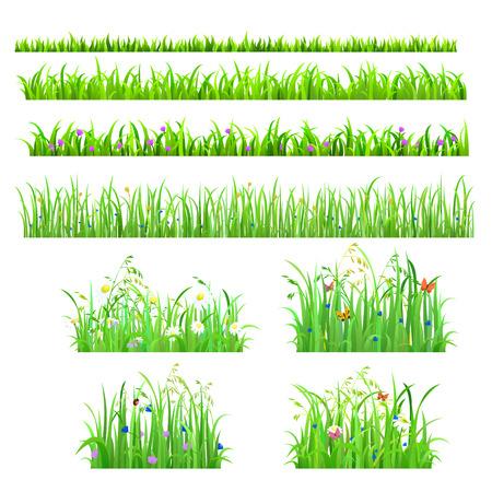campo de flores: Conjunto de 8 sin costura agradables brillantes frescos líneas hierba mariposa flor aislados fondo. Naturaleza Colección de fondos de primavera verano.