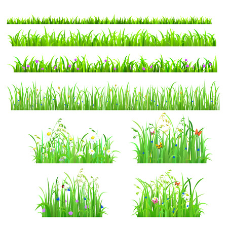 flower meadow: Set of 8 seamless nice shiny fresh flower butterfly grass lines isolated background. Nature spring summer backgrounds collection.