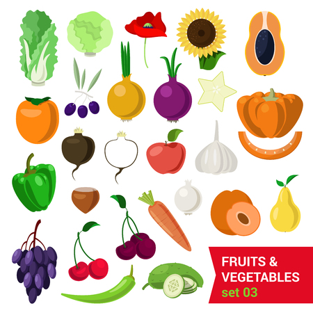 grape fruit: Flat style fancy quality set of fruit and vegetable set. Cabbage salad sunflower nut olive poppy persimmon carrot pear onion carom apple grape cherry cucumber chestnut turnip. Creative food collection Illustration