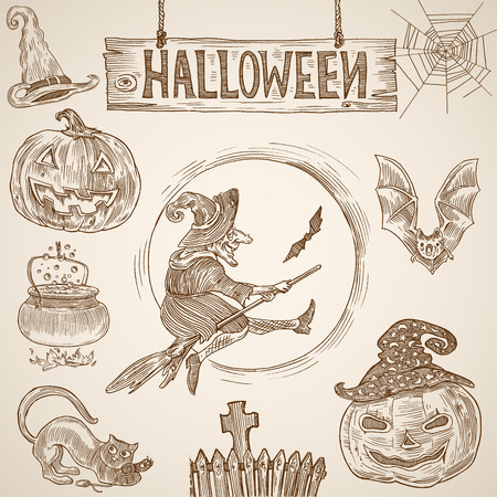 broomstick: Halloween Vintage engraving graphics set: Witch on broomstick, bat, pumpkin, cemetery, cauldron, cobweb, cat, withes hat and text sign. Creative vector illustration design elements hand drawing style. Illustration