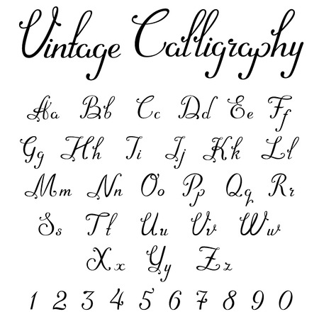 Vintage Calligraphic Script Font Linear vector. Handmade Calligraphy typeface letters numbers Uppercase Lowercase Symbols Characters