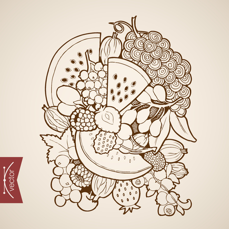 Engraving vintage hand drawn vector fruit. Pencil Sketch melon, watermelon, berry, strawberry, grapes, figs, raspberries, cherry illustration.