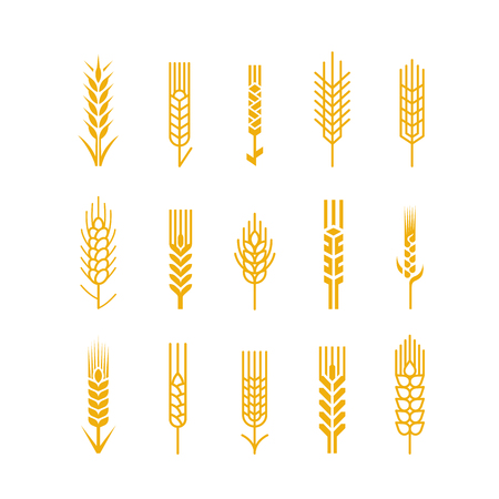 spikes: Spikes vector silhouette icon collection. Design Elements for  Bread Bakery Beer Brewery Whisky business Illustration