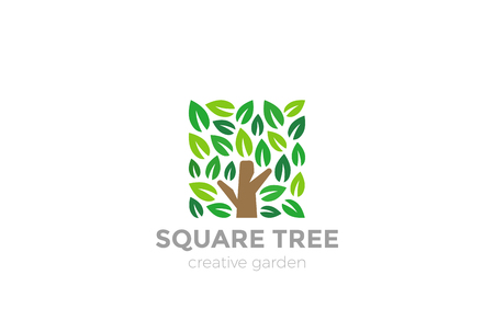 Tree Logo square shape design vector template.  Organic Natural Plant Garden Park Logotype concept icon