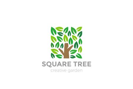 Tree Logo square shape design vector template.  Organic Natural Plant Garden Park Logotype concept icon