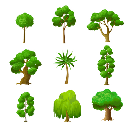oak trees: Flat green trees vector illustration set. Alder, maple, palm, oak, willow, birch, garden and forest tree icons. Nature concept.