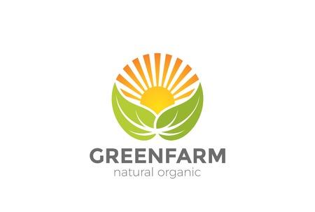 Green Natural Organic Farm Logo design vector template.  Sun over Leaves Logotype circle shape icon
