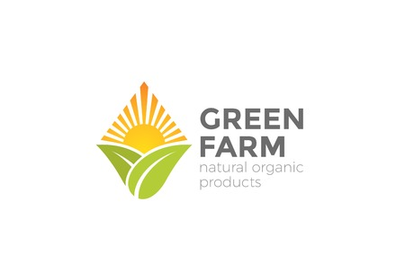 Green Natural Organic Farm Logo design vector template.  Sun over Leaves Logotype rhombus shape icon