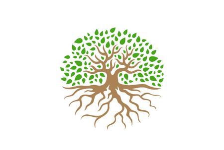 Árbol de círculo con ilustración de vector de raíces. Icono del concepto de jardín