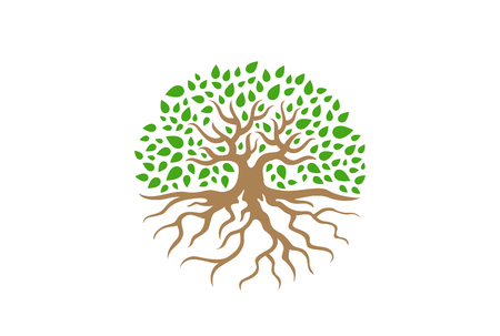 Circle Tree with Roots vector Illustration. Garden concept icon Illustration