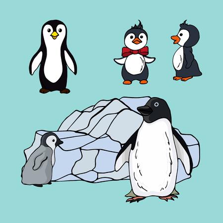 Set of penguins of different species, illustration of a family of seabirds penguins black white on blue background