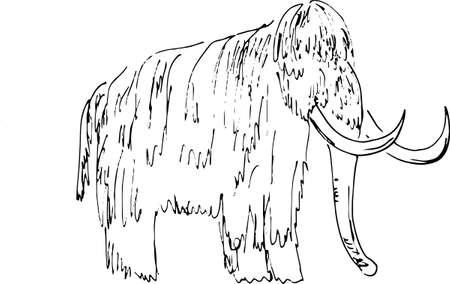 prehistoric mammal animal, tundra woolly mammoth with giant tusks, vector illustration with black ink lines isolated on a white background in a hand drawn style