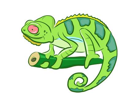 Colorful Chameleon Cartoon Clipart Illustration