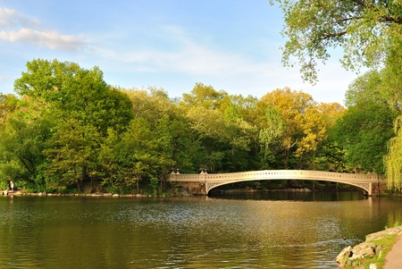 A beautiful pond in Central Park in the middle of New York City. photo