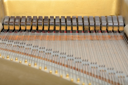 Internal dampers of a piano Imagens