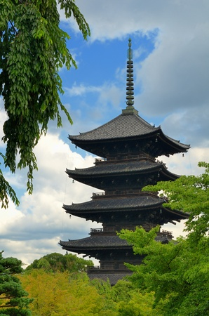 weeping willow: To-ji Pagoda in Kyoto