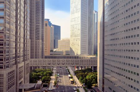 Scene at the Metropolitan Government Building in Shinjuku, Tokyo, Japan.