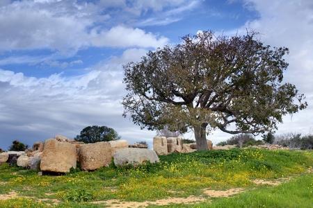 벳 Guvrin 국립 공원, 이스라엘에서에서 고고학 유적.