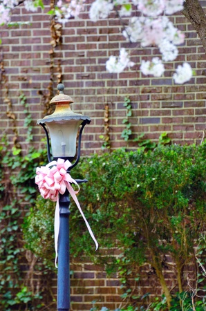 Lantern with flowers in the Springtime Stock Photo - 12890195