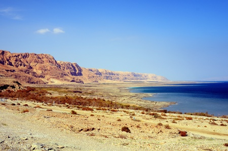 Coast of the Dead Sea in Israel Stock Photo - 12890253