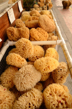 Piles of sea sponges for consumer use