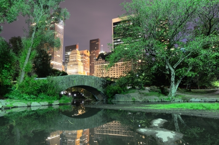 Summertime in New York Citys Central Park at night photo