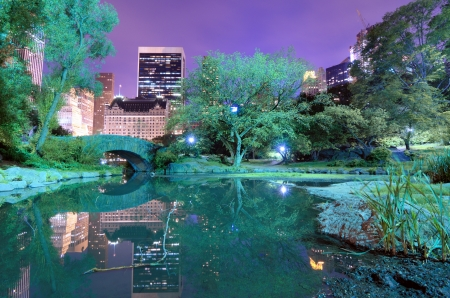 south park: Summertime in New York Citys Central Park at night Stock Photo