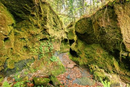 sapporo: Koke no Domon is a moss canyon located near Sapporo, Japan.