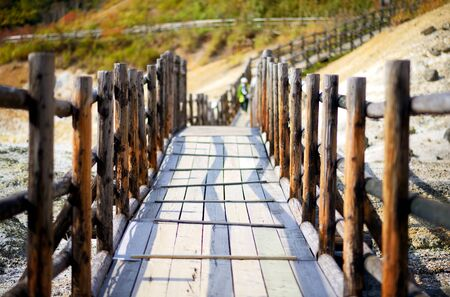 elevated walkway: wooden path with shallow depth of field