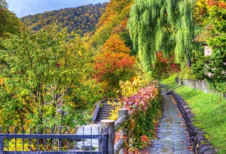 seasonal fall foliage in Jozankei, Japan. photo