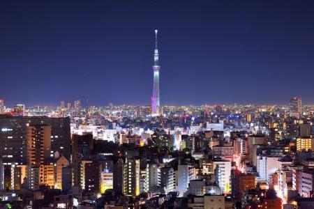 Skyline von Tokyo, Japan an der Tokyo Tower.