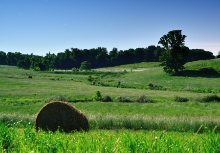 america countryside: Moonlit farmlands in North Georgia, USA.