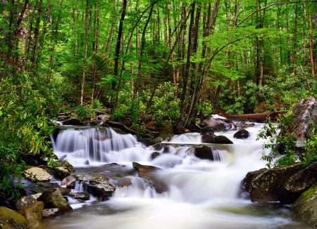 cascades in the Smoky Mountains of Tennessee, USA. photo