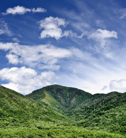 great smoky mountains national park: Summer landscape in the Smoky Mountains near Gatlinburg, Tennessee. Stock Photo