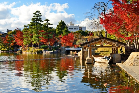 Fall foliage at  in Nagoya, Japan. Standard-Bild