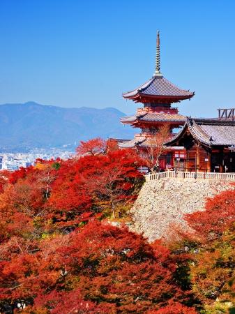dera: Kiyomizu-dera pagoda with fall colors in Kyoto, Japan