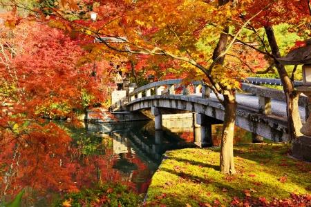 Follaje de oto�o en el templo Eikando en Kyoto, Jap�n.