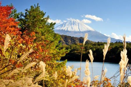 Mt. Fuji and autumn foliage at Lake Saiko.