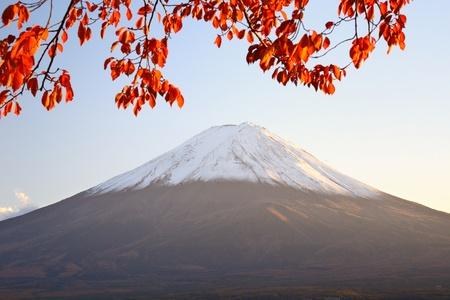 momiji: Mt. Fuji with fall colors in japan.