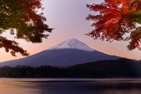 산. 가와구치 호수에서 후지산과 가을 단풍. 스톡 콘텐츠