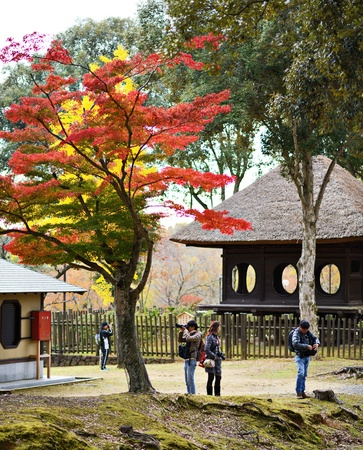 antiquity: NARA, JAPAN - NOVEMBER 18: Photographers under fall foliage November 18, 2012 in Nara, JP.  Viewing the fall foliage is a cultural pastime in Japan dating from antiquity.