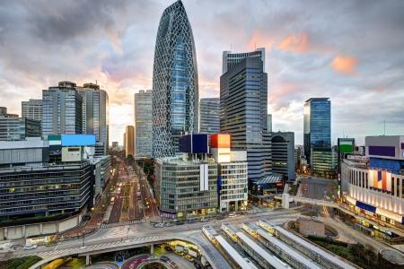 tokyo prefecture: Shinjuku Ward skyline in Tokyo, Japan.