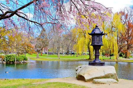 ma: Lagoon at Boston Public Garden in Boston, Massachusetts, USA.