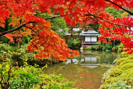 Japanese garden in Nikko, Japan. 111