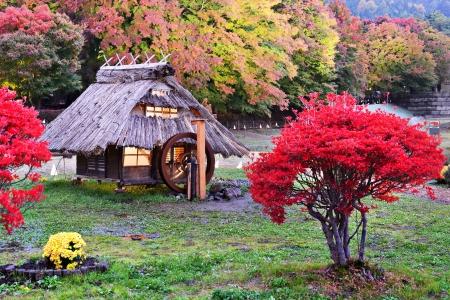 kawaguchi: Huts and fall foliage in Kawaguchi, Japan.