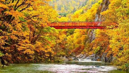 foot bridge: Autumn Stream in Jozankei, Japan